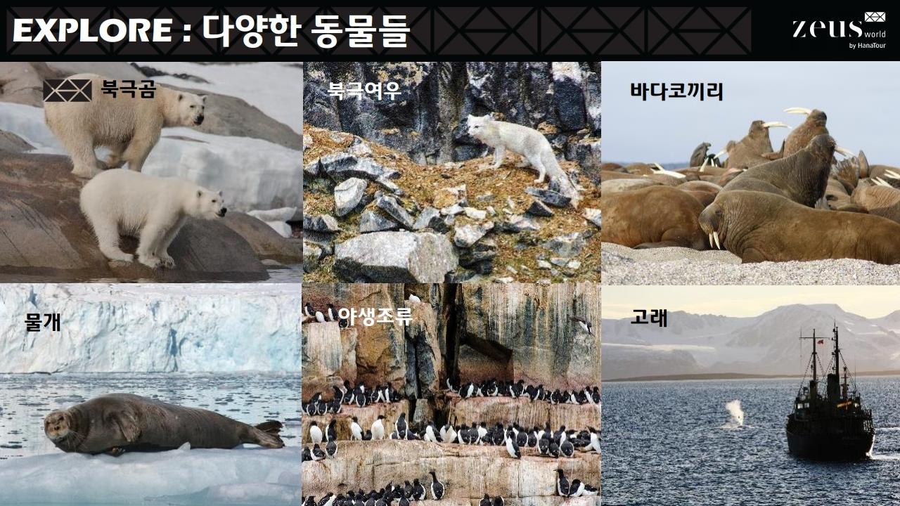 북극상품 설명회자료_배포용_20190114[1].pdf_page_09.jpg